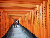 Японские ворота Torii святыни стоковая фотография