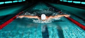 укомплектуйте личным составом заплывание бассеина Стиль бабочки плавая стоковая фотография rf