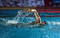 укомплектуйте личным составом заплывание бассеина Стиль ползания плавая стоковое изображение