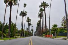 Улицы Беверли-Хиллз, Калифорнии стоковые фотографии rf