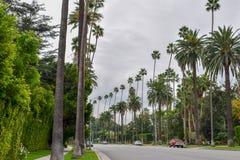 Улицы Беверли-Хиллз, Калифорнии стоковое изображение