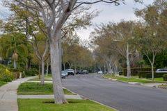 Улицы Беверли-Хиллз, Калифорнии стоковые изображения