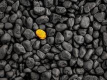 Уникальный камень стоит вне от концепции толпы стоковые фото