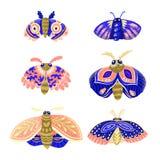 Установите декоративных сумеречниц в голубом, цвета пинка и золота иллюстрация штока