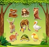 Установите стикера животных бесплатная иллюстрация