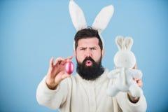 Утихомирите вниз и отпразднуйте Хипстер с длинными ушами кролика держа зайцев класть яйца Бородатый человек с игрушкой и пасхой з стоковые изображения rf