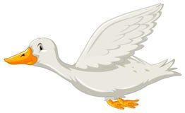 Утка летая на белом backgrounf иллюстрация штока