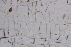 Шелушить белая краска стоковые изображения rf
