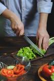 Шеф-повар режет с ножом вегетарианский салат стоковые изображения