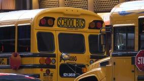 Школьные автобусы в Нью-Йорке сток-видео