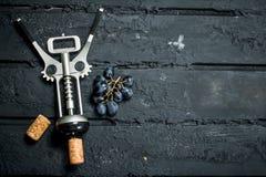 Штопор с ветвью виноградин стоковые фото