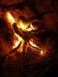 Танцуя пламена от небольшой стрельбы огня взглядом ночи изумляя стоковые изображения