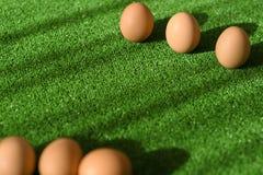 Творческое украшение пасхи праздника от естественных яя, на траве в солнечном свете стоковая фотография rf