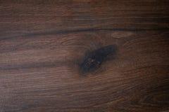 Темные коричневые мраморные плитки с линиями и картинами в форме деревянного партера стоковое фото