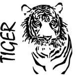 Тигр, чертеж руки, вектор иллюстрация штока