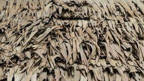 Традиционная крыша хижины сделанная из лист кокоса стоковая фотография
