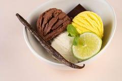 Трио вкусных ванили и известки шоколада приправило замороженный десерт в белом шаре стоковые фото