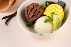 Трио вкусных ванили и известки шоколада приправило замороженный десерт в белом шаре стоковое фото rf