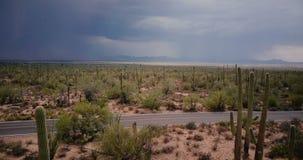 Трутень медленно летая над эпичным полем пустыни кактуса, черный автомобиль приемистости управляет мимо вдоль дороги в национальн видеоматериал