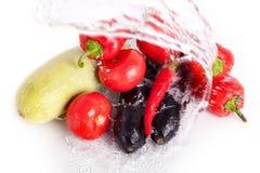 Томаты, красные сладкие перцы, накаленные докрасна перцы чилей, фиолетовые баклажаны, зеленый цукини в двигателе крутой воды стоковое изображение rf