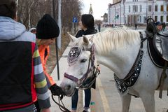 Торжество в городе по случаю Дня Труда Верховая езда на международный День Труда праздника стоковые фотографии rf