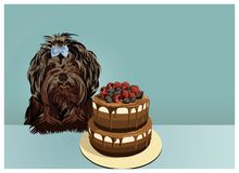 Little black lap dog and cake. Happy birthday greeting card. Vector illustration vector illustration