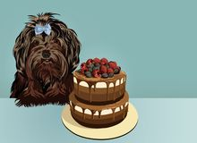 Little black lap dog and cake. Happy birthday greeting card. vector illustration