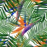 Флористическая тропическая безшовная картина для обоев или ткани Картина с цветками и листьями Handmade картина акварели иллюстрация штока