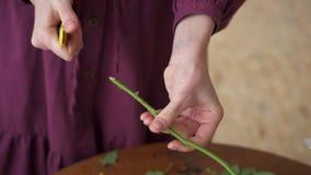 Флорист молодой женщины подготавливает цветки для создания букета, закрывает вверх сток-видео