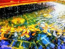 Фонтан Нового Орлеана французского квартала во взгляде парка сценарном для туристов стоковое фото rf