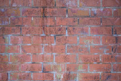 Фон из  кирпичей в изморози. Background of the old wet bricks in the frost Royalty Free Stock Images