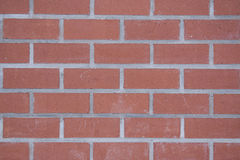 Фон из  новых кирпичей. Background of the new bricks bonded with grey stripes cement mortar Stock Photos