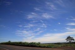 Цвета Бразилии, серое, зеленые и красивого голубого и белый в небе стоковые фото