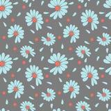 Цветки стоцвета для говорить, любов или не любов удачи Чертеж вектора в модных пастельных цветах бесплатная иллюстрация