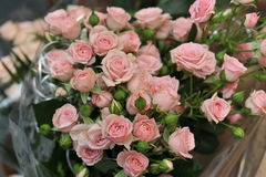 Цветы. Great gift for women, a bouquet of beautiful roses stock photography