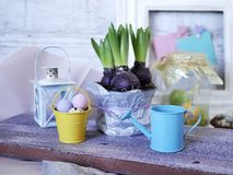 Цветочный горшок с обрабатыванными землю гиацинтами, яйцами цыпленка, яйцами триперсток, оформлением пасхи на деревянной светлой  стоковое изображение rf