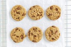 6 частей печений обломока шоколада отдельно на белой предпосылке стоковые фото