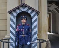Человек предохранителя в военной форме стоковые фотографии rf