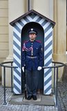 Человек предохранителя в военной форме стоковое фото