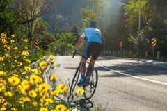 Человек с велосипедом в горах Дорога в горах покрытых с лесом стоковое изображение