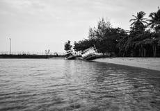 Черно-белый ржавый и получившийся отказ корабль на тихом пляже стоковая фотография