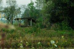 Хата в лесе стоковые изображения rf