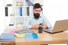 Работа офиса Независимая работа Разработчик ИТ Современное занятие Веб-разработчик бородатого человека Гай зверский средства марк стоковое изображение