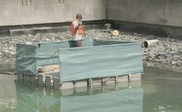Работник извлекает растительность твердых частиц и плавать из озера стоковое фото rf