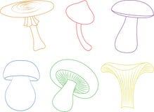 Различные формы mashrums бесплатная иллюстрация