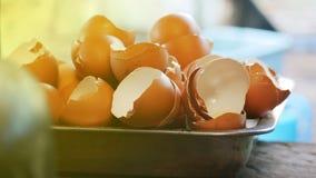 Раковина яйца повторно использована стоковые изображения