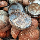 Раковины кокоса сдают в утиль от кокоса стоковое изображение rf