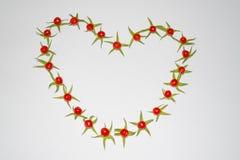 Рамка из помидоров в виде сердца. Frame of small tomatoes in the shape of a heart Royalty Free Stock Images