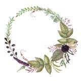 Рамка растительности флористическая, венок лист, венок акварели, шаблон для приглашений, поздравительных открыток, печатей бесплатная иллюстрация