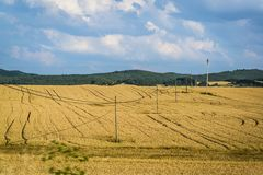 Регион пшеничных полей, Кастили и Леон, Испания стоковое фото rf